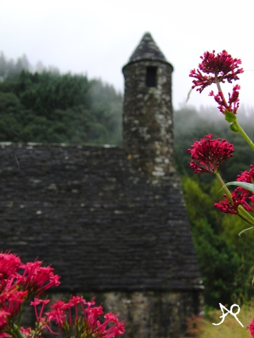 Focua on the lovely house or on the flower infront - Glendalough, Ireland